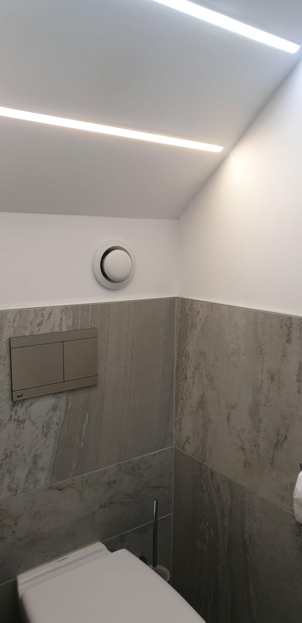 Ireland toilet alp-003